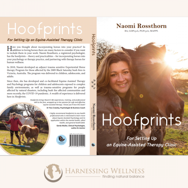 Hoofprints for Setting up an Equine-Assisted Therapy Clinic